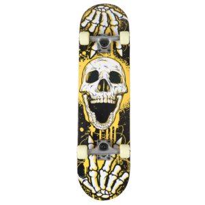 Double Kick Skull Skateboard Reviews