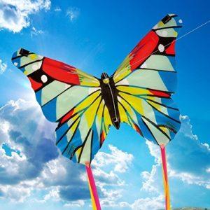 Mini-Butterfly-Kite-1